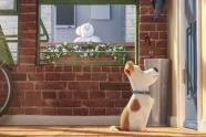 Pets - Das geheime Leben unserer Haustiere